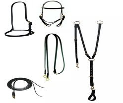 Headstalls, Cavessons & Reins