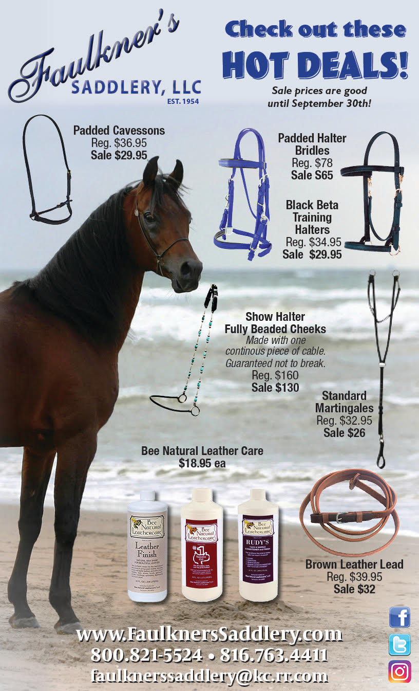 Horse Products Brochure