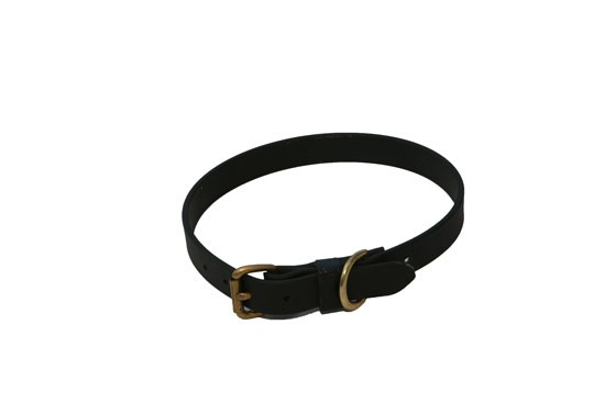 """3/4"""" wide Dog Collars.  Available in many colors"""