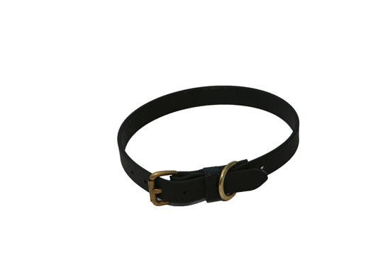 "5/8"" Beta Dog Collar"