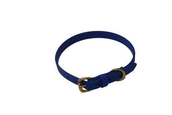 "Dog Collar  3/4"" wide- Royal Blue"