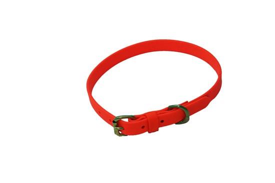 "Dog Collar -3/4"" wide Hunter Orange"