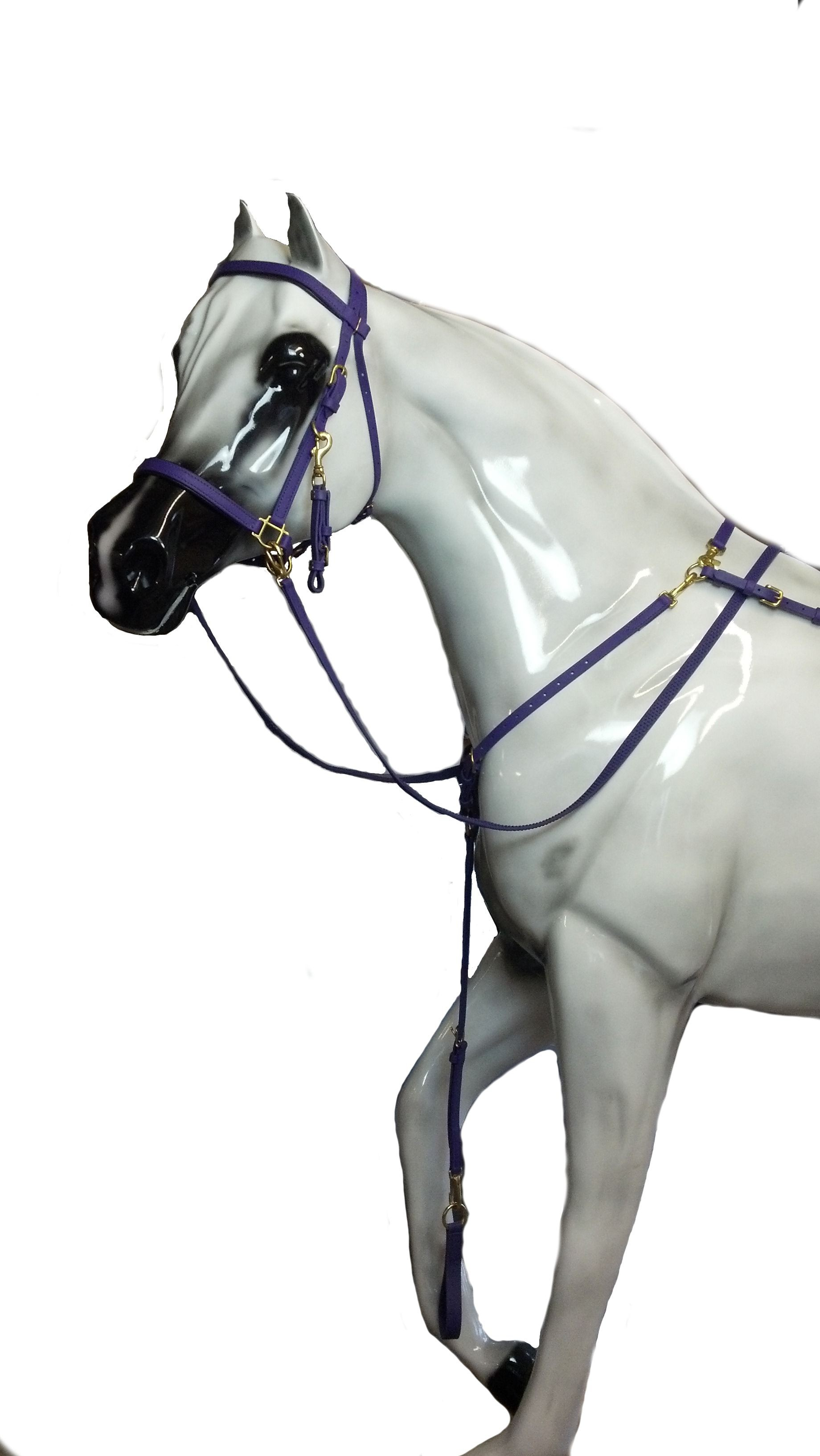 Beta Padded Nose & Crown Halter Bridle.  Available in many colors.
