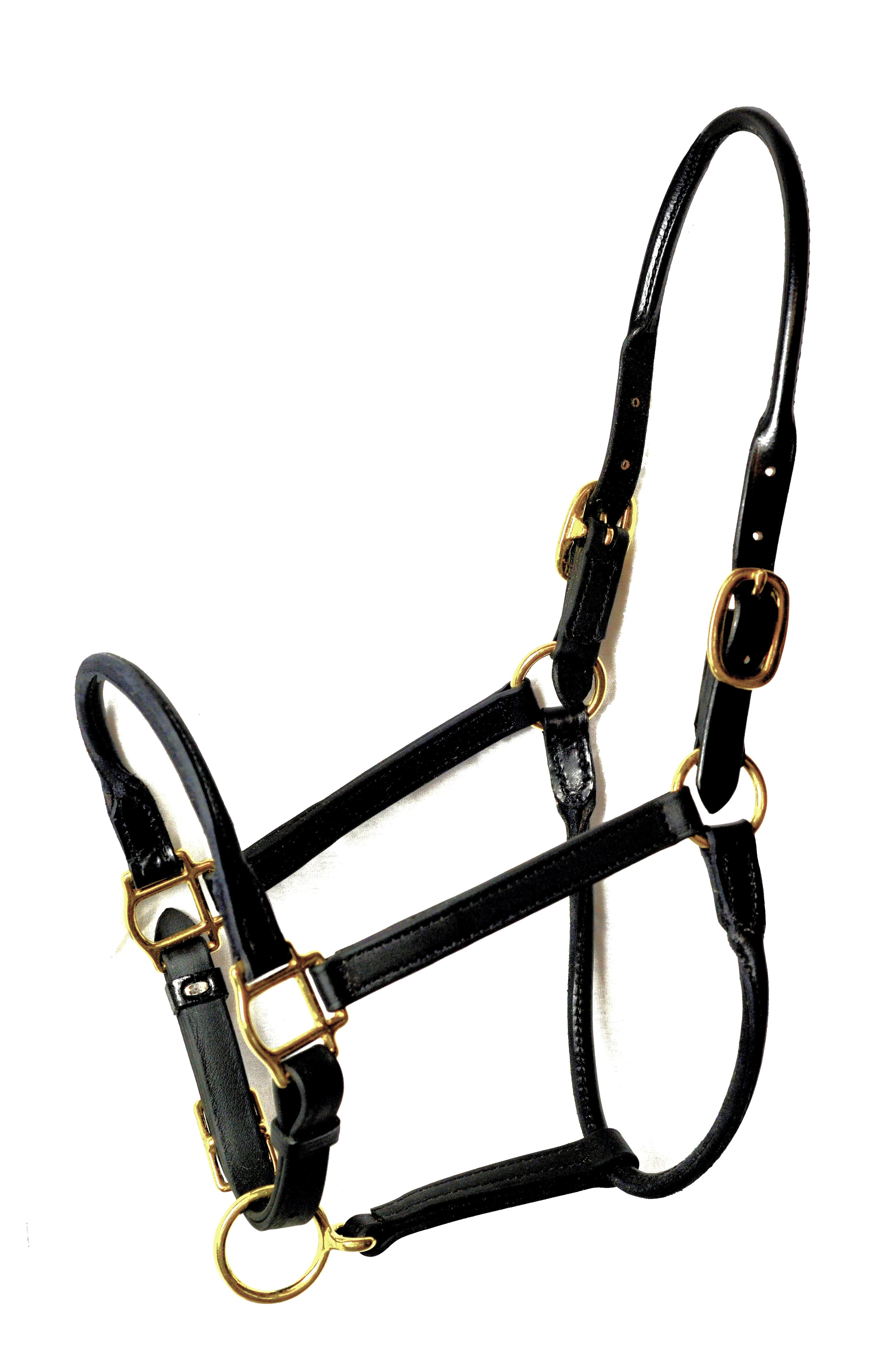 Rolled Nose, Throat & Crown Stable Halter for Arabians