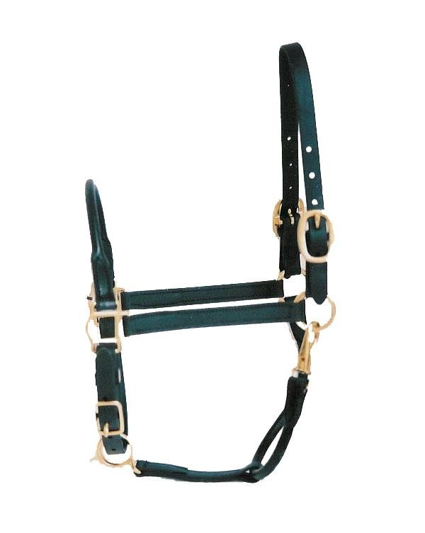 Rolled Nose and Throat All Leather Halter.