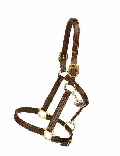 "1"" Triple Stitched Leather Halter NEW!"