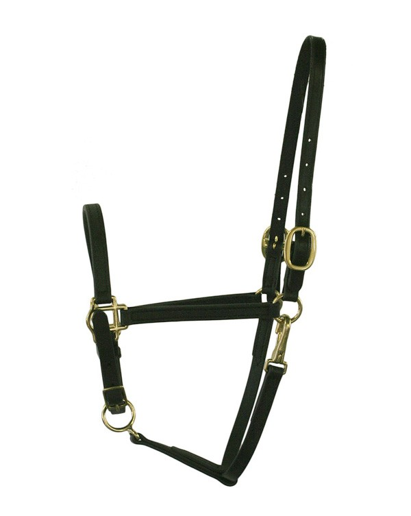 "5/8"" Wide Standard Beta  Stable Halter with Snap"
