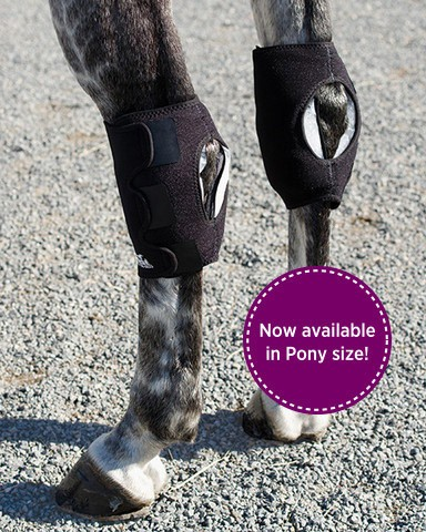 ICE HORSE HOCK WRAPS WITH 6 ICE INSERTS