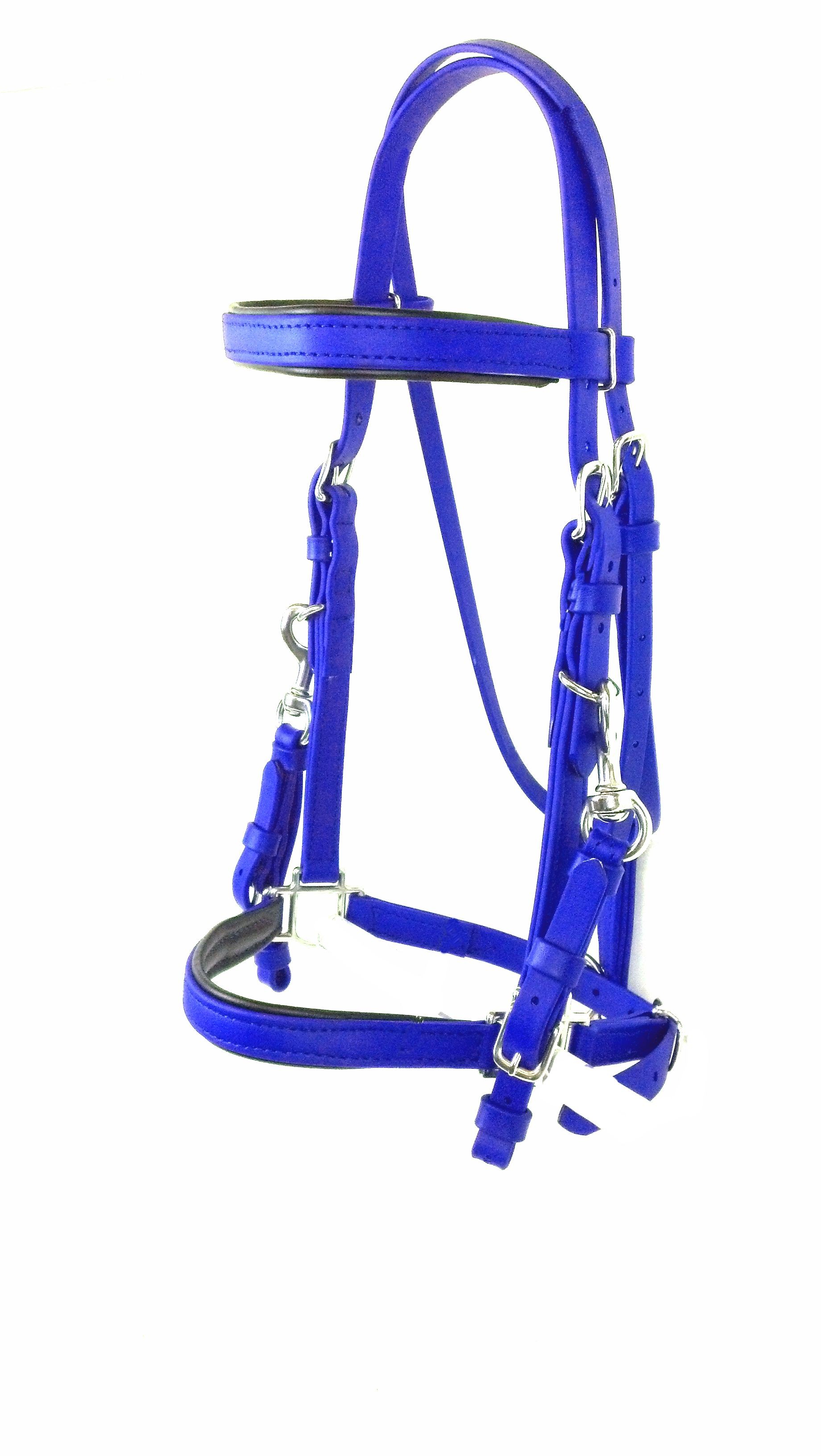 Halter Bridle - Royal Blue Padded Halter Bridle  in Stainless Steel