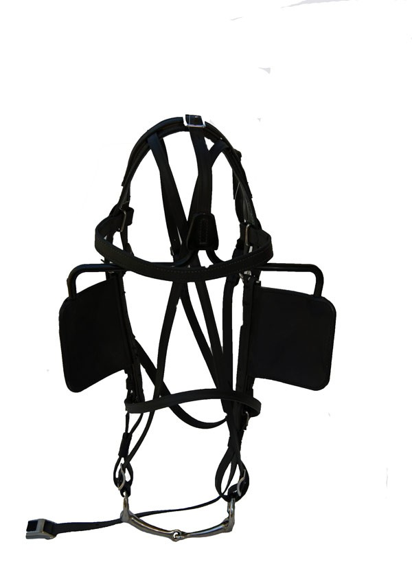 Beta Driving Bridle with Stainless Steel Tapered Snaffle