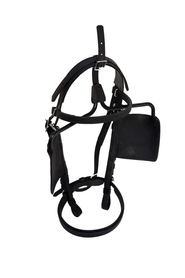 Beta Driving Bridle