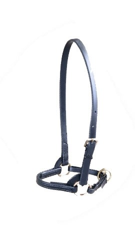 "3/4""  Beta Standard Training Halter"
