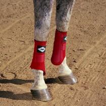 PRO H35 Orthopedic Equine Splint Boot Wrap