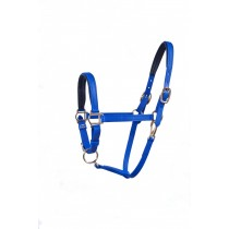 "3/4""  Padded Nose and Crown Halter.  Available in many colors."