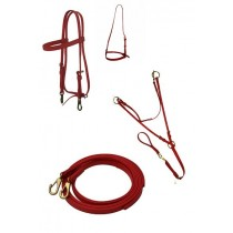 Colored Training Tack Bundle II - Adjustable Martingale
