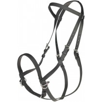 BETA BITLESS BRIDLE