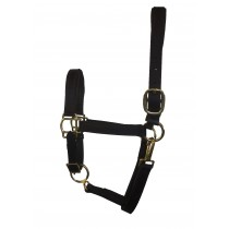 "Padded Stallion Beta Halter 1"" Wide"