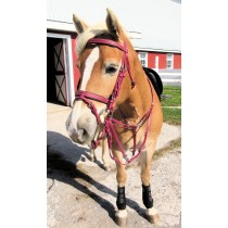 Colored Training Tack Bundle I - German Martingale
