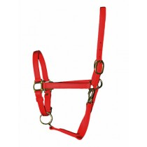 "3/4"" Wide Standard Beta Halters in many colors"